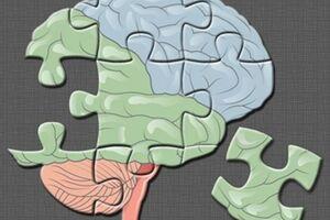Шизоидное расстройство: причини виникнення та основні симптоми, способи лікування захворювання