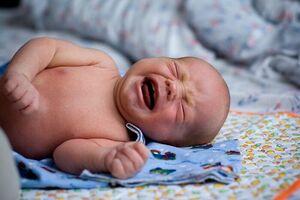 Врожденный токсоплазмоз: причины возникновения и основные симптомы, способы лечения заболевания