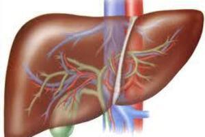 Гнойный холангит: причини виникнення та основні симптоми, способи лікування захворювання