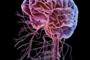 Гипертоническая энцефалопатия: причины возникновения и основные симптомы, способы лечения заболевания