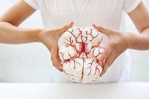 Киста головного мозга: причини виникнення та основні симптоми, способи лікування захворювання