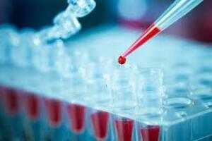 Омская геморрагическая лихорадка: причини виникнення та основні симптоми, способи лікування захворювання