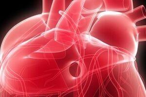 Сердечная астма: причини виникнення та основні симптоми, способи лікування захворювання