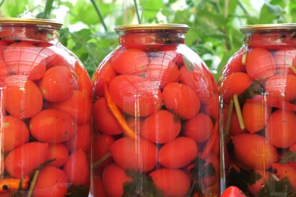 Маринованные помидоры с базиликом