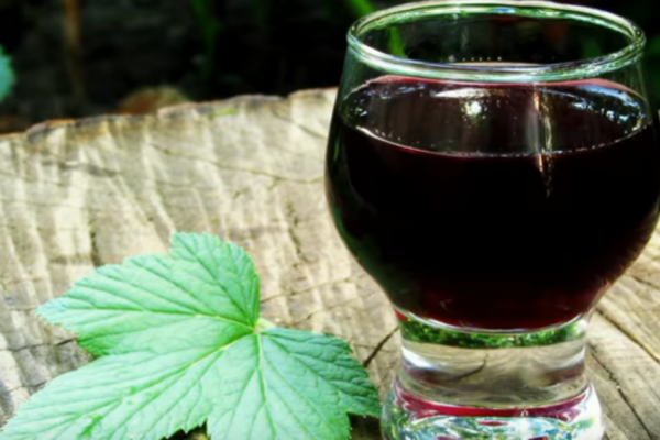 Наливка з чорної смородини на спирту