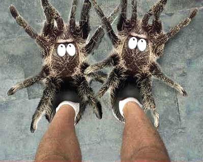 Людина-павук ...