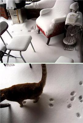 Зима прийшла в наші відносини ...