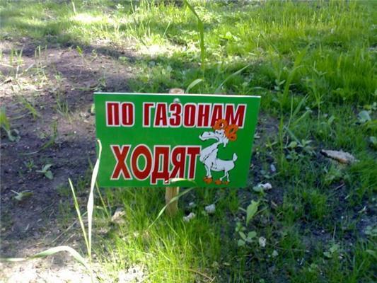 Позитив дня. Плач Путина, сытая дефка и наши школьницы. ФОТО