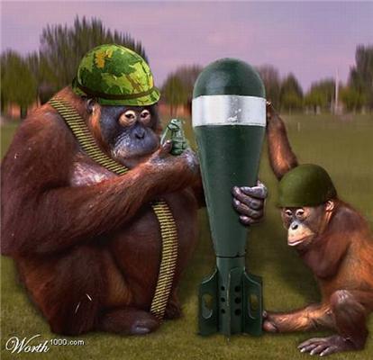 Лисички взяли сірники, а мавпочка - ніж. Це тварини! ФОТО