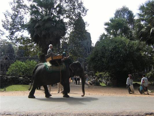 Містичне. Індія.Іменно тут виріс знаменитий Мауглі.ФОТО
