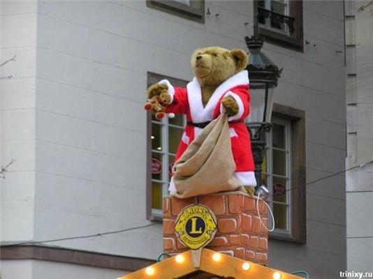 Позитив дня. Дві для Медведа, будун і японочки. ФОТО