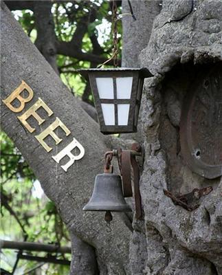 Бар в живому баобабі. Величезні жуки там п'ють пиво. ФОТО