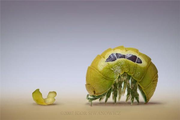 Неймовірно красиві роботи Igor Siwanowicz. ФОТО