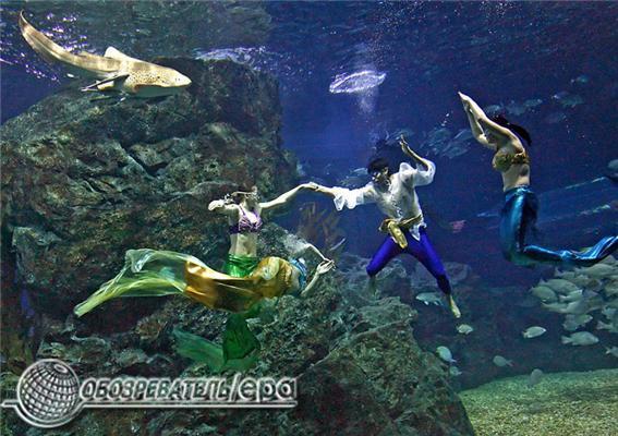 У водах Таїланду плавають українські русалки