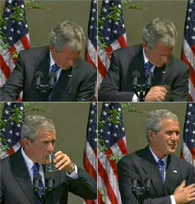 Джорджа Буша обгадили во время пресс-конференции. ФОТО
