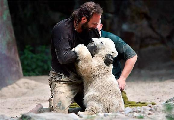 Новые великолепные фотографии медвежонка Кнута. ФОТО