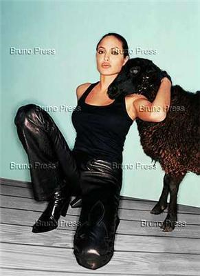 Анжелина Джоли занимается любовью с конем. ФОТО