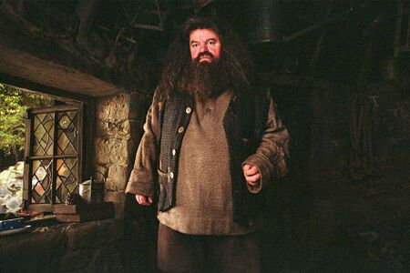 """Хакер розкрив таємницю смертей в останньому """"Гаррі Поттера"""""""