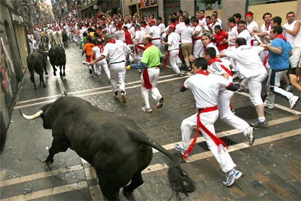 Вони брали биків за роги. ФОТО