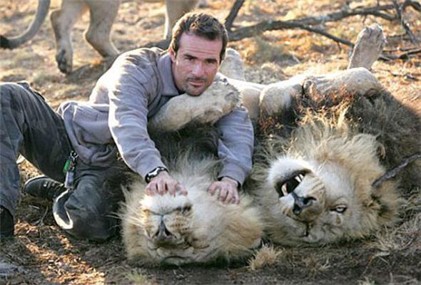 Лев - кращий друг людини. Фоторепортаж