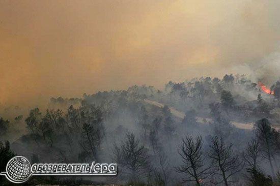 Під Афінами горять ліси. ФОТО