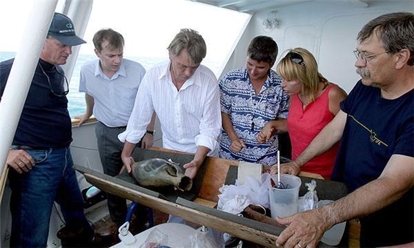Ющенко взяв участь у роботі підводної експедиції. ФОТО