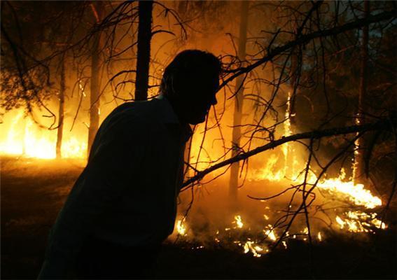 Президент Ющенко гасить лісову пожежу. Фоторепортаж