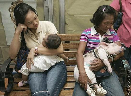 Говорят, через 20 лет миром будут править азиаты. Это дурдом