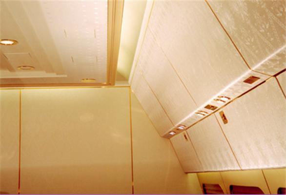 Ексклюзивно: Літак Медведєва. Вид зсередини. Золото і розкіш