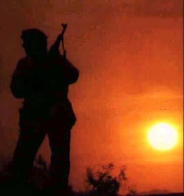 """В Ираке уничтожен один из лидеров """"Аль-Каиды"""""""