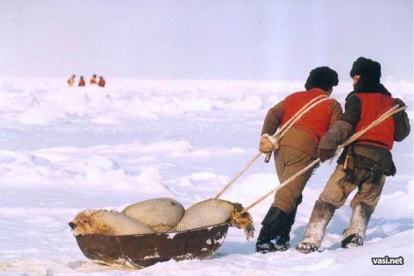 Жесть. Вбивство одномісячних дітей рибальськими баграми ...