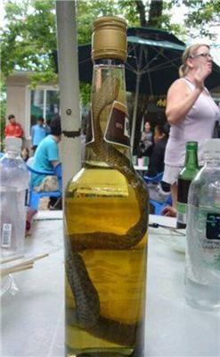 Алкоголь с перчинкой, хвостом и чешуей