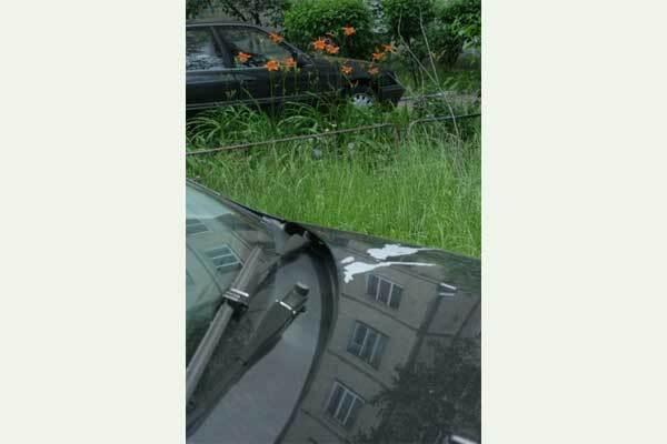 В Киеве неизвестный обливает кислотой автомобили