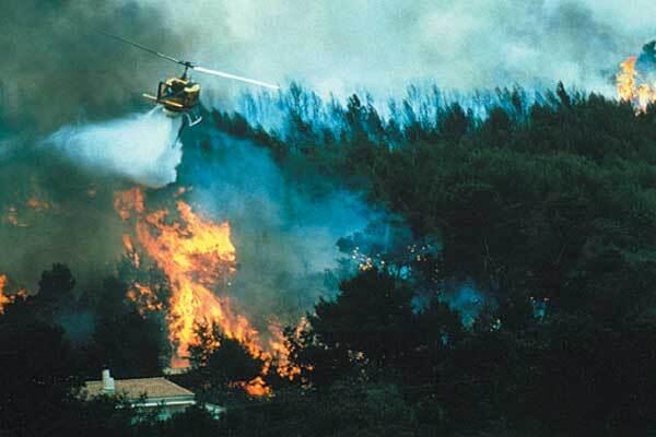 Лесные пожары охватили Ливан