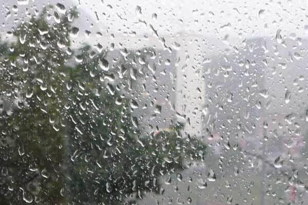 Правительство делает все для пострадавших от ливней
