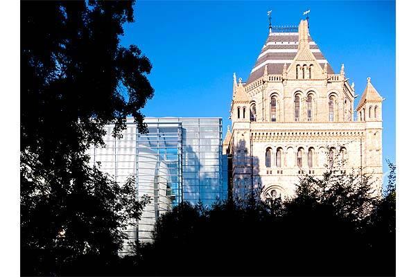 """Музей """"Кокон"""" вмістить у себе 34 млн рослин і комах"""