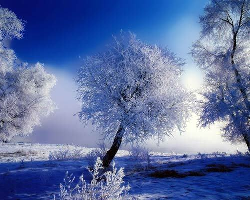 Украину ждет лютая зима?