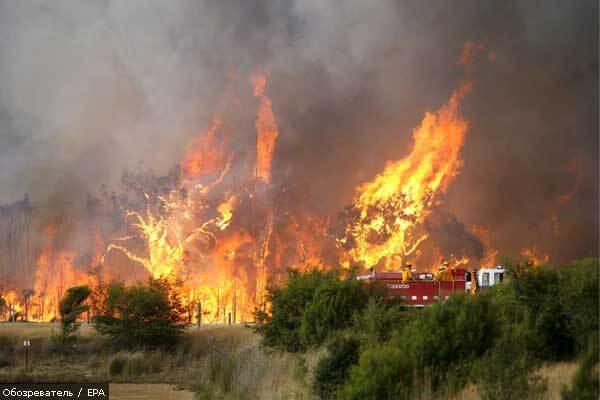 У Херсонській області горить ліс