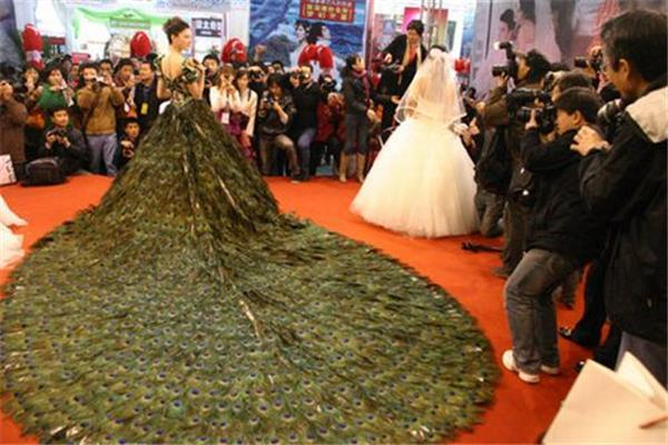 Мода. Весільна сукня з пір'я павича