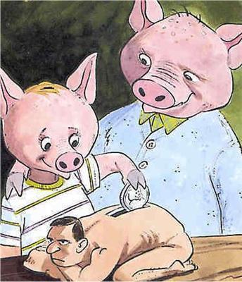 Женщины и свиньи. Почему они часто ведут себя одинаково?