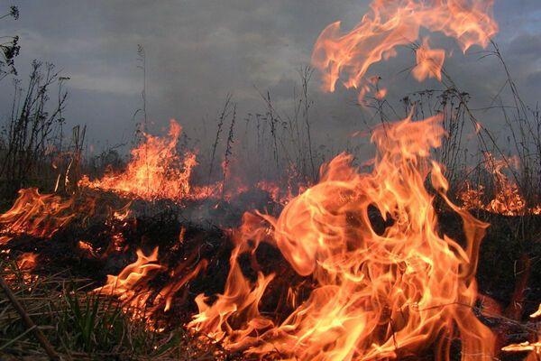 Под Симферополем горит мусор, крымчане готовят блокаду