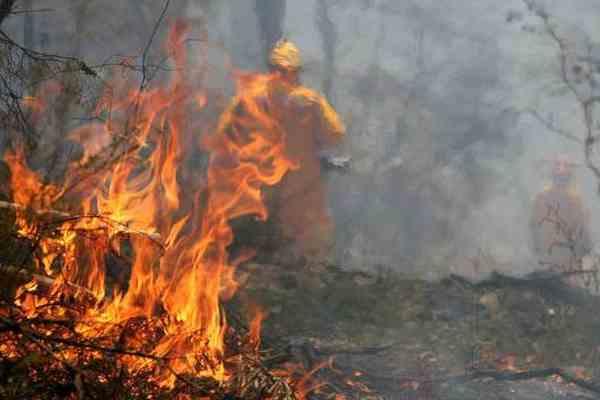 В Калифорнии массово эвакуируют людей из-за лесного пожара