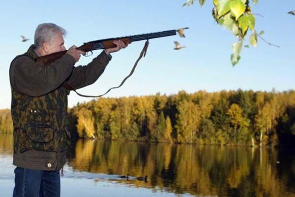 Охотник открыл стрельбу, защищая уток