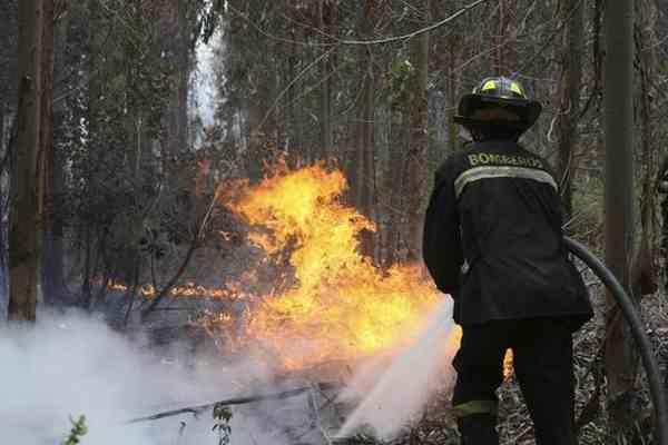 Франция поможет грецким властям противопожарными самолетами
