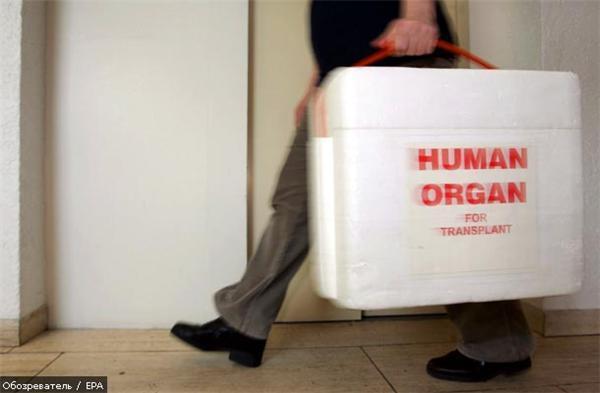 Германские фармацевты скупали органы умерших украинцев