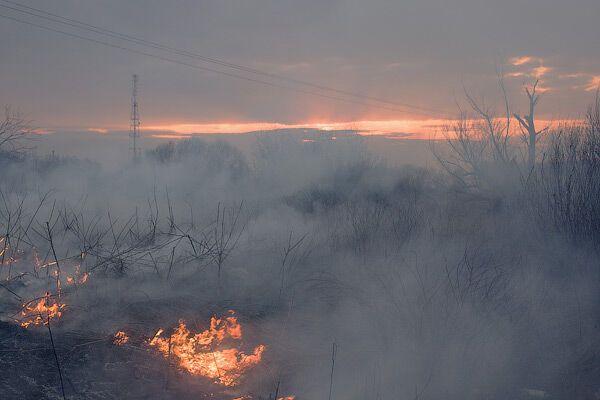 За сжигания сухой листвы МЧС грозит штрафами