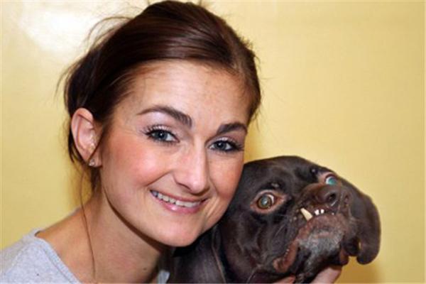 У самої потворної собаки Британії з'явився господар. ФОТО