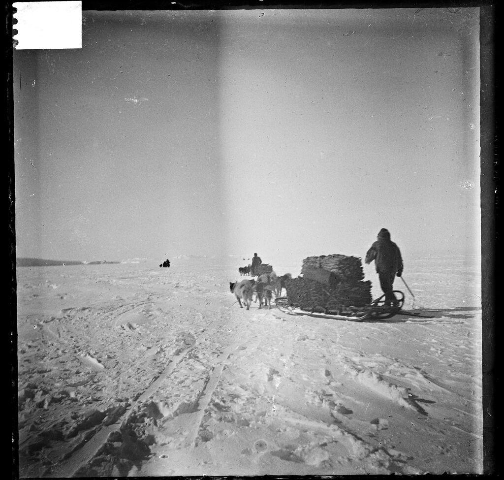Фото амундсен на южном полюсе