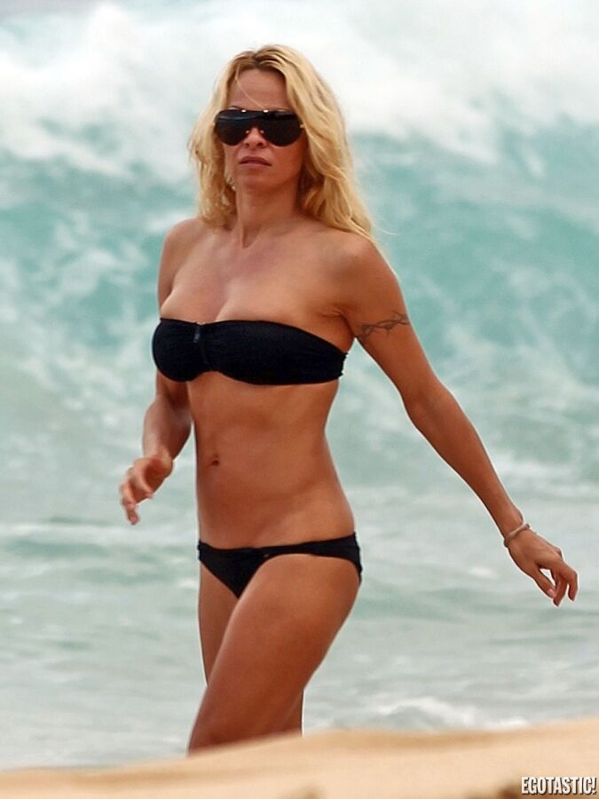 Pamela anderson bikini gallery