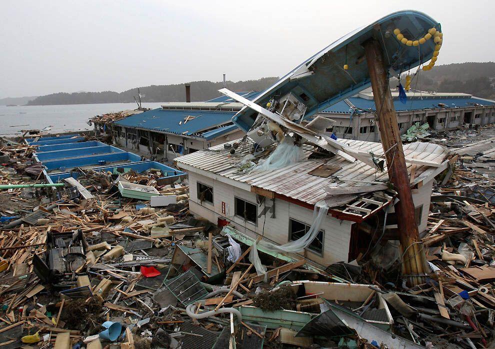 выразить соболезнование картинки японского цунами получает топливо